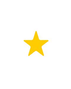 Fluorescent Orange Star Shaped Stickers 10mm